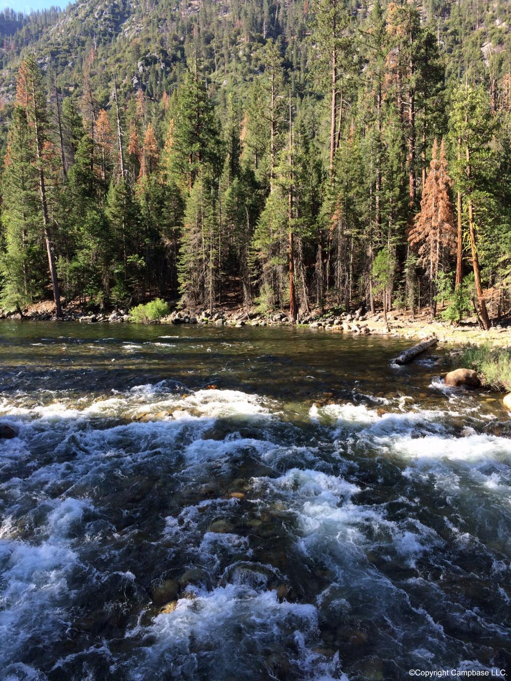 Sentinel Campground / Sequoia NP ,Three Rivers ,California