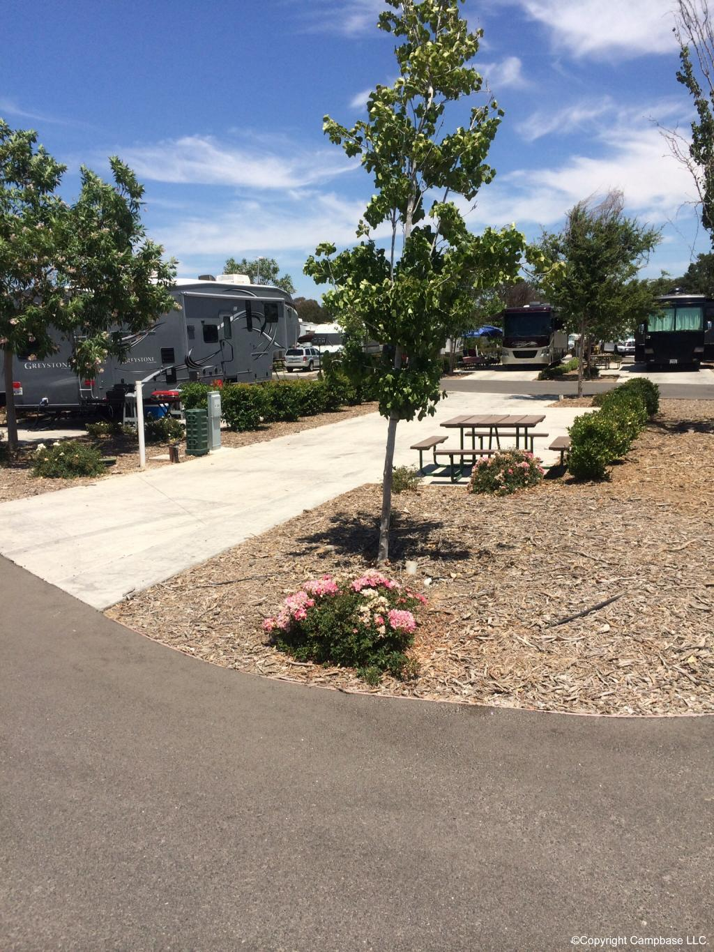 Vines Rv Resort Paso Robles California
