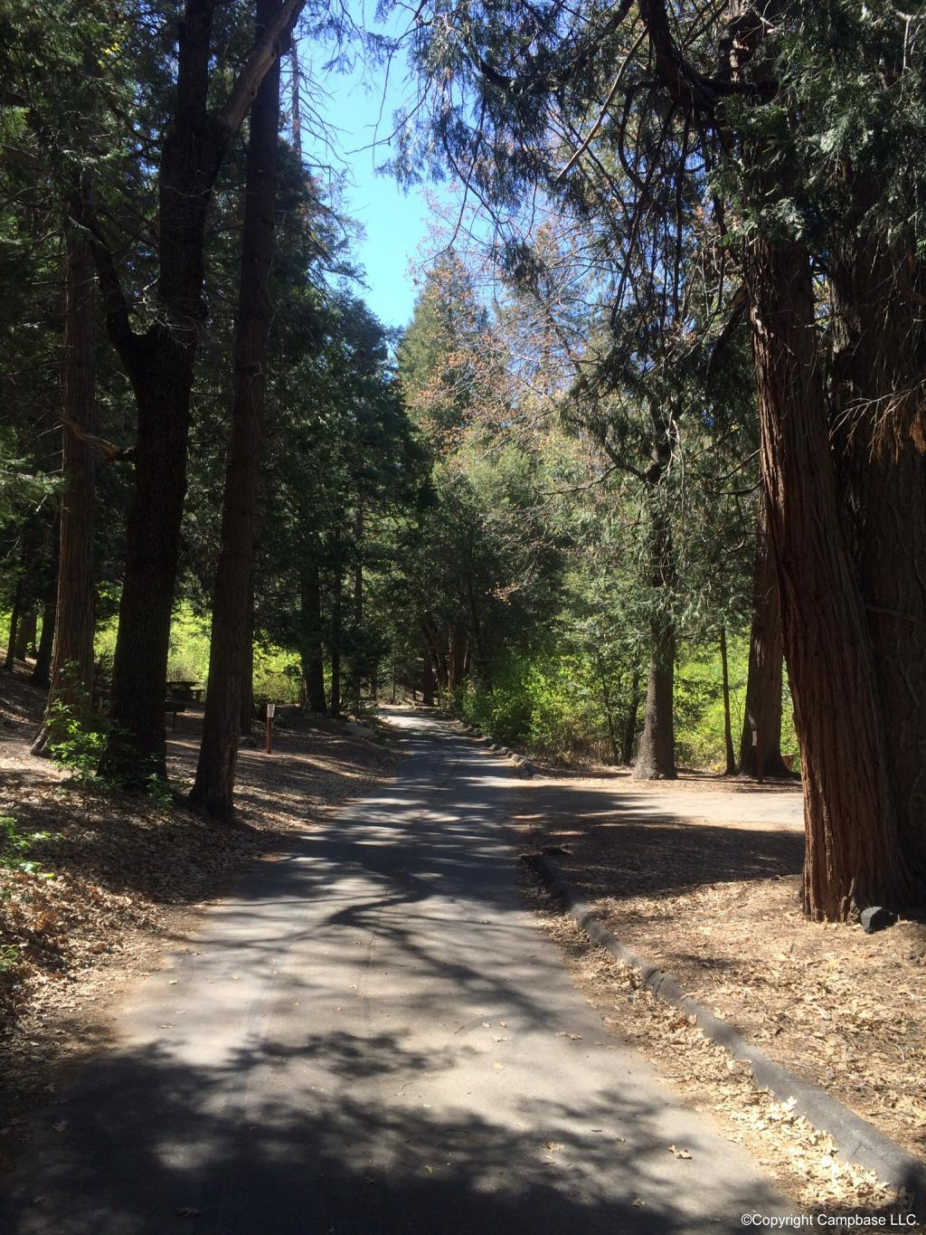 Fry Creek Campground Palomar Mountain California