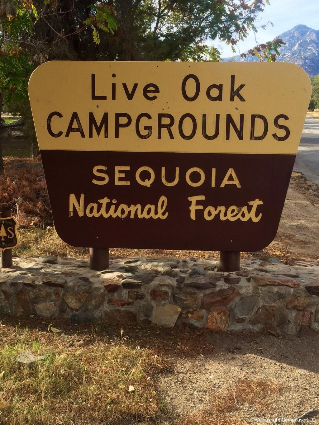 Live Oak South Campground Wofford Heights California