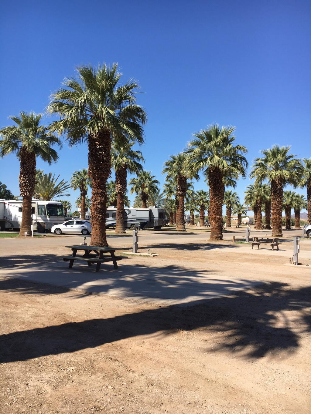 Sans End Rv Park Winterhaven California