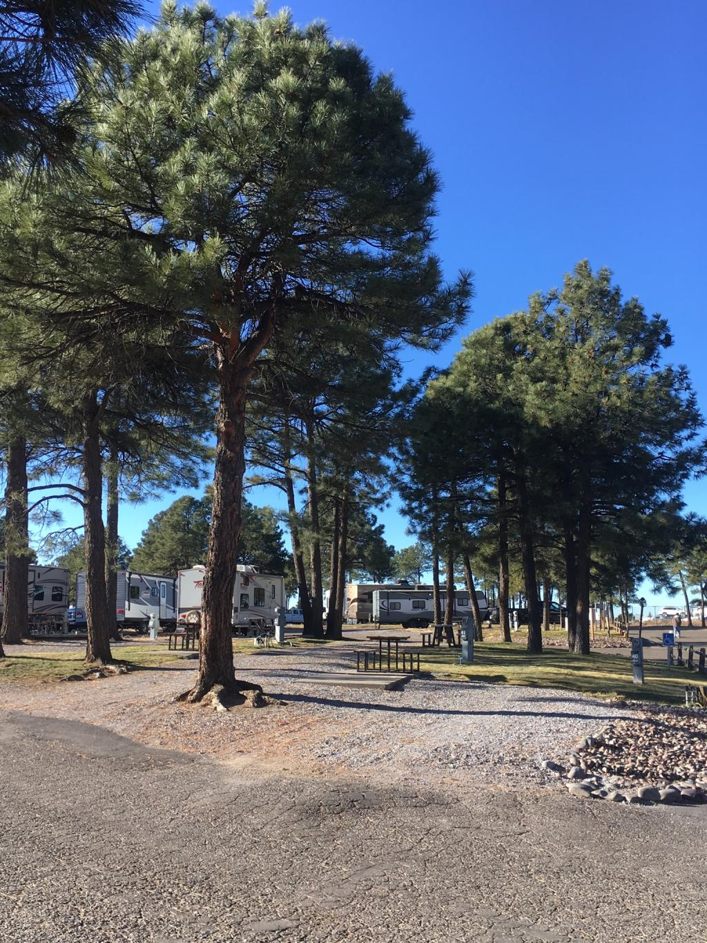 Black Barts Rv Park Flagstaff Arizona