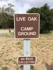 Live Oak Grove Campground