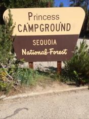 Princess Campground / Sequoia NP