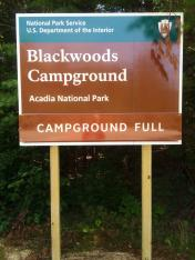 Blackwoods Campground, Acadia NP