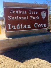 Indian Cove Campground Joshua Tree NP