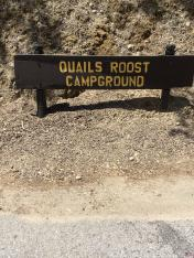 Quails Roost Campground Lake Nacimiento